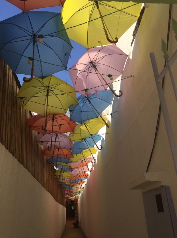 sol e chuva guarda chuva